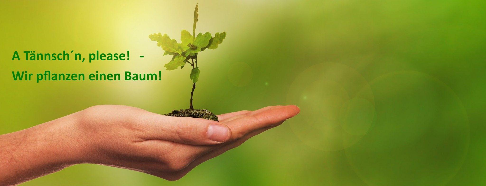 Neuer Termin für die Brunner Baumpflanz-Aktion